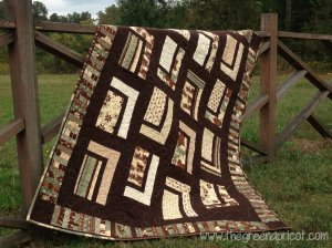 Urban Cabin- Retreat quilt